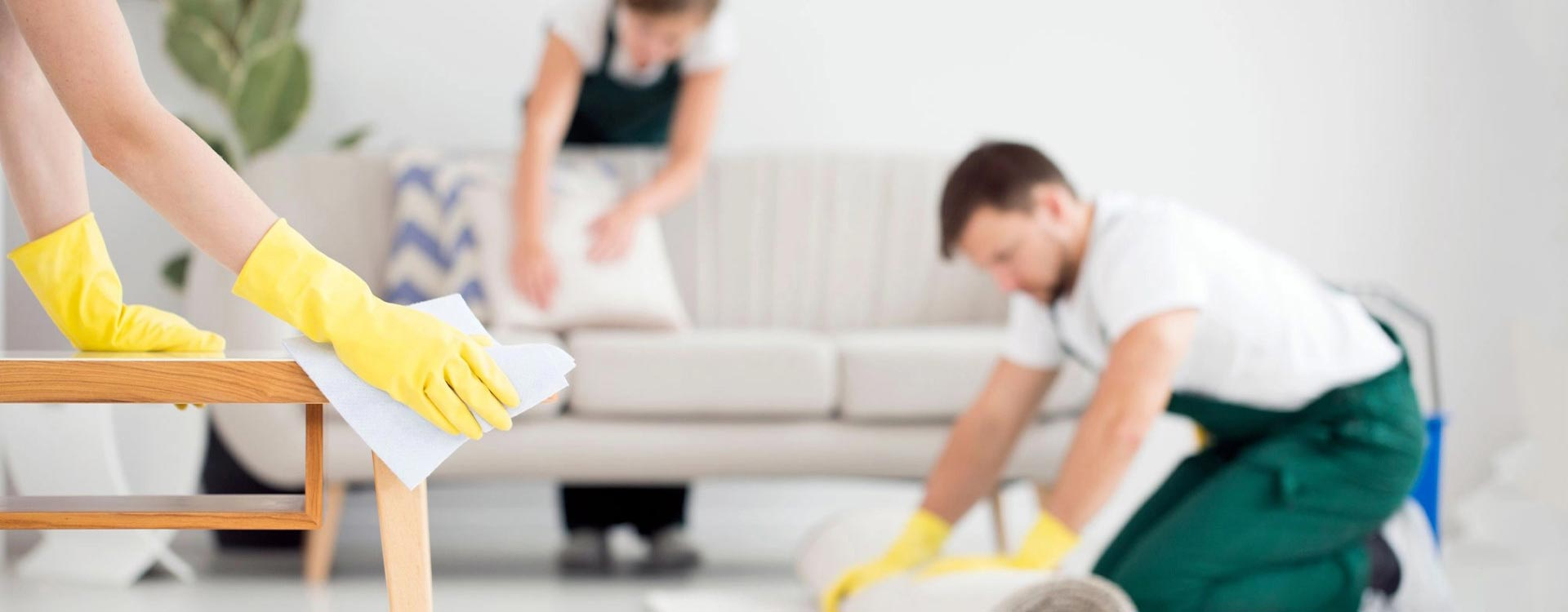 Best Local Cleaners in Washington Dc